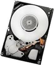 HGST Ultrastar C10K300 SAS 147GB
