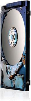 HGST Travelstar Z5K500 320GB (HTS545032A7E680 / 0J38063)
