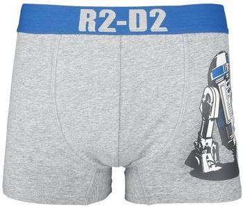 Flashpoint Star Wars Boxershorts - R2-D2 [Andere Plattform] S grau