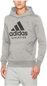 Adidas Herren Pullover Sport ID Branded French Terry (B47375) medium grey heather