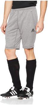 Adidas Trainingsshorts Tango grau