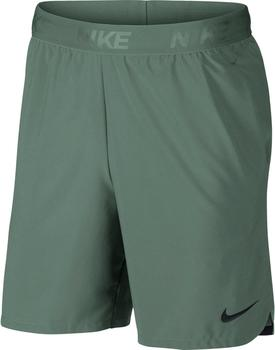 Nike Flex Vent Max 2.0 Shorts Men (886371) green