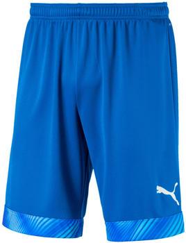 puma-short-cup-shorts-704034-blue