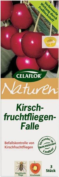 Naturen Kirschfruchtfliegen-Falle