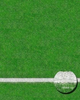 Savage Grass Sports Field Floor Drop (244x244cm)