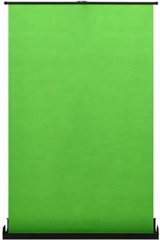 """vidaXL Fotohintergrund 60"""" 4:3 grün"""