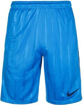 Nike Dry Squad Shorts blau