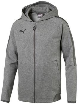 Puma Ascension Casuals Hoody Pullover, Medium Gray heather