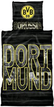 Bvb Borussia Dortmund Fußball Fanartikel Preisvergleich Testberichtde