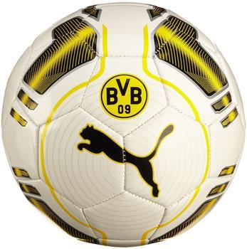 Puma BVB Ball evoPower 6