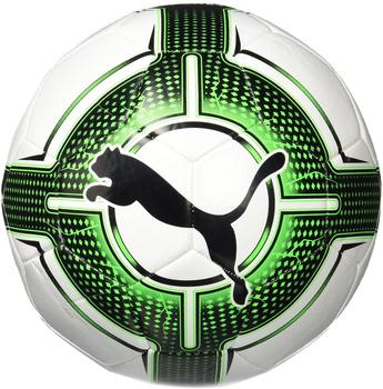 Puma evoPower 6.3 Trainer MS puma white/green gecko/puma black