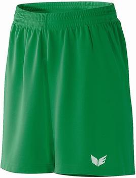 Erima Celta Shorts grün