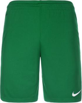 Nike Park II Shorts grün mit Innenslip
