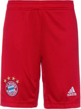 Adidas FC Bayern München Home Shorts Kinder 2019-2020