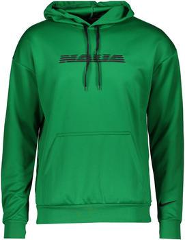 Nike Pullover Football Hoodie Nigeria (CU1413) pine green/black
