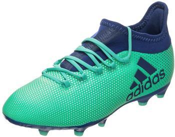Adidas X 17.1 FG Jr aero green/unity ink/hi-res green