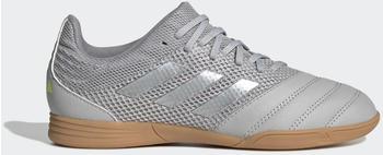 Adidas Copa 20.3 Sala IN Fußballschuh Grey Two / Matte Silver / Grey Three Kinder (EF8338)