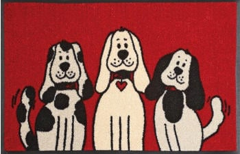 Wash+Dry Three Dogs 50x75cm rot