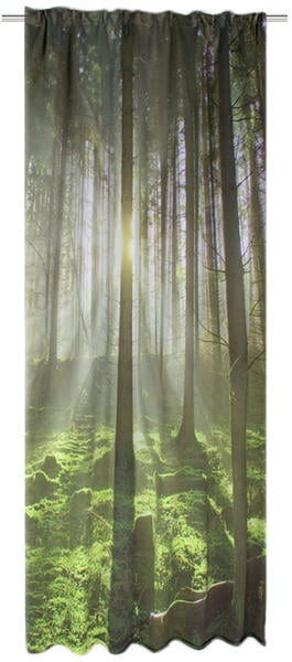 Rolladen Schmidt Saarlouis Grüner Wald 245x120cm