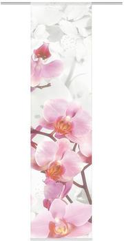 Home Wohnideen Sakura Vorhang 60x245cm