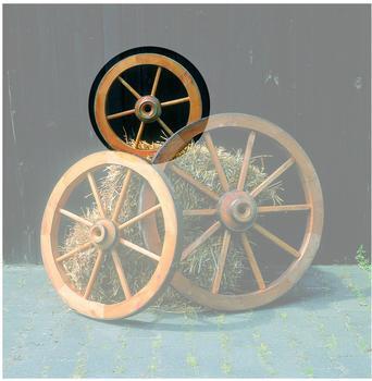 promex-wagenrad-50-cm-350-1