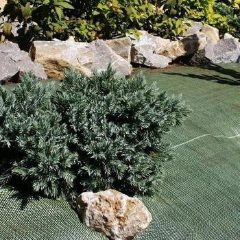 Noor Unkrautblocker grün 0,9 x 10m (105 g/m²)