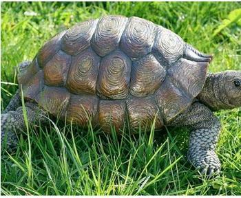 Boltze Schildkröte (34 cm)