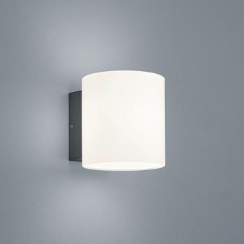 Helestra Doon LED graphit Opalglas (A18907.93)