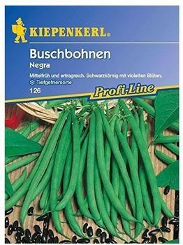 Kiepenkerl Buschbohnen Negra