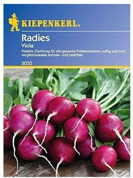 Kiepenkerl Radies Viola