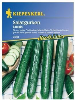 Kiepenkerl Salatgurke Saladin F1