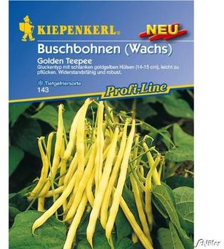 Kiepenkerl Buschbohnen Golden Teepee