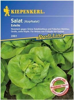 Kiepenkerl Kopfsalat Estelle