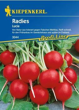 kiepenkerl-radies-lucia