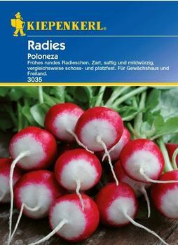 kiepenkerl-radies-poloneza