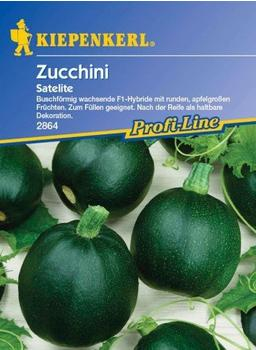 kiepenkerl-zucchini-satelite