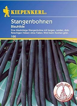 Kiepenkerl Stangenbohne Blauhilde