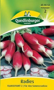 Quedlinburger Saatgut Radies Flamboyant 2