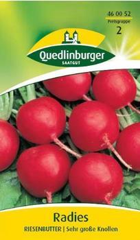Quedlinburger Saatgut Radies Riesenbutter