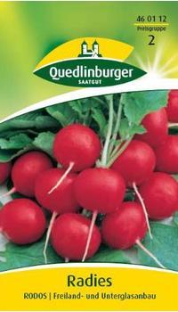 Quedlinburger Saatgut Radies Rodos