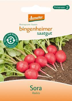 Bingenheimer Saatgut Radies Sora