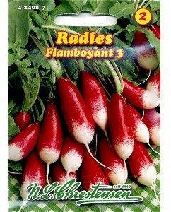 Chrestensen Radies Flamboyant 3 rot weiß