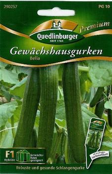 Quedlinburger Saatgut Gewächshausgurke Bella F1
