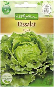 Chrestensen Eissalat Stylist