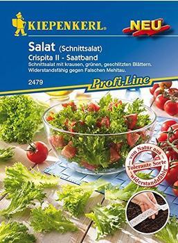 kiepenkerl-schnittsalat-crispita-ii-saatband