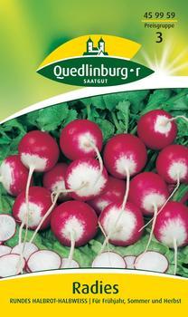 Quedlinburger Saatgut Radies Rundes halbrot-halbweiß