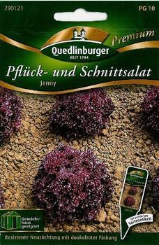 Quedlinburger Saatgut Pflücksalat Jenny