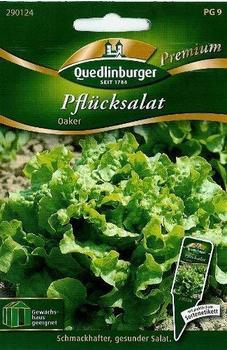 Quedlinburger Saatgut Pflücksalat Oaker