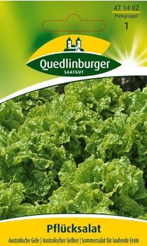 Quedlinburger Saatgut Pflücksalat Australische Gele