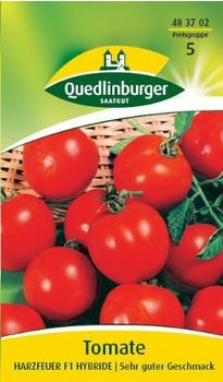 Quedlinburger Saatgut Tomate Harzfeuer F1